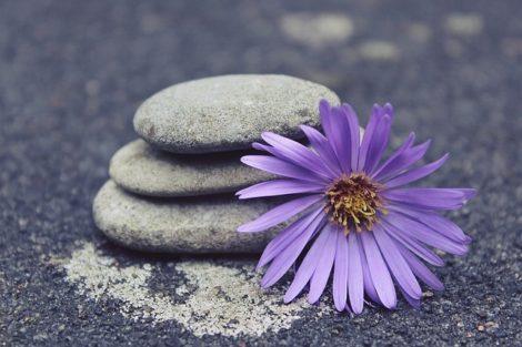 was ist jnana yoga