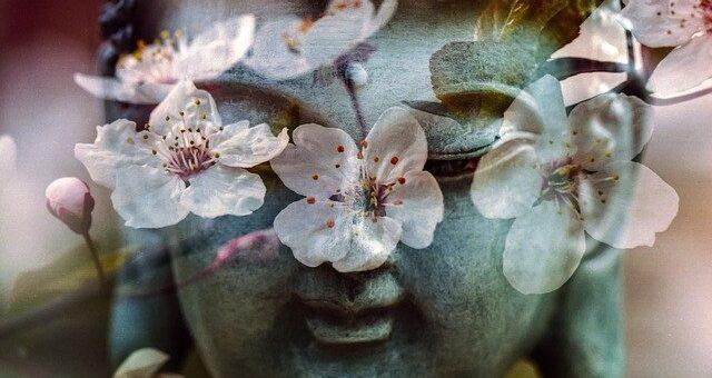 Meditation - wie steht's mit deiner Mental-Hygiene?