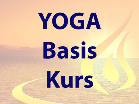 Yoga-Basis-Kurs